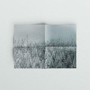 Freyja theme - Sparrow and Snow